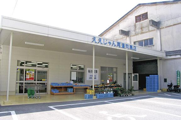 ええじゃん尾道「向島店」